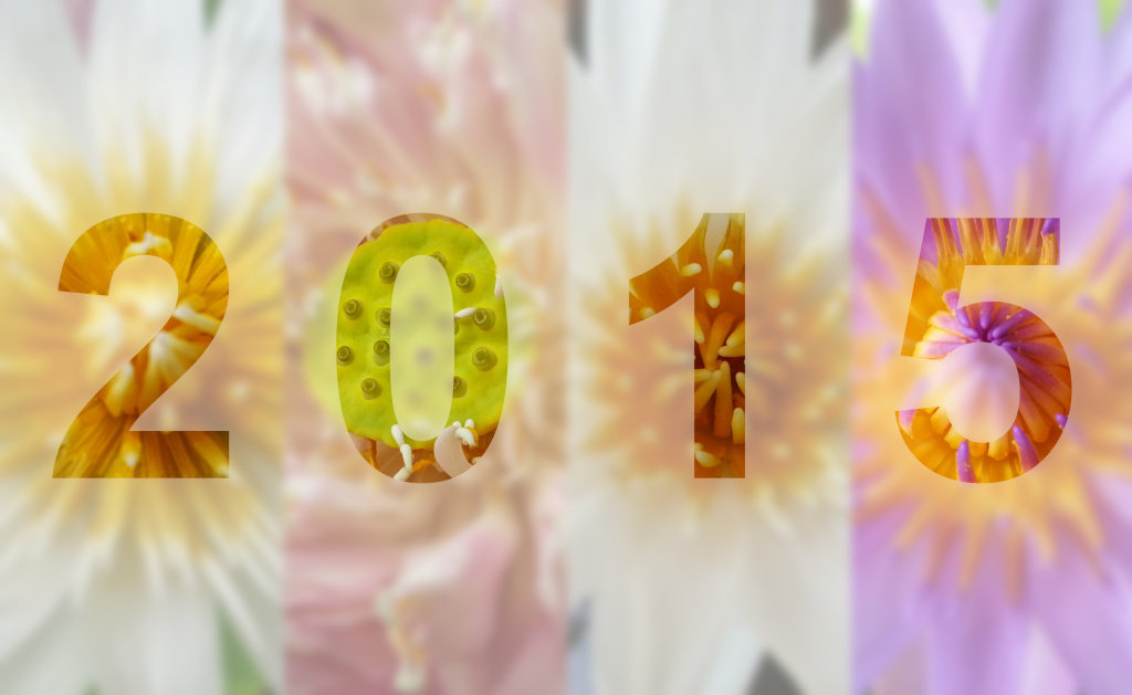 Fresh Flowers for a Fresh Start 2015